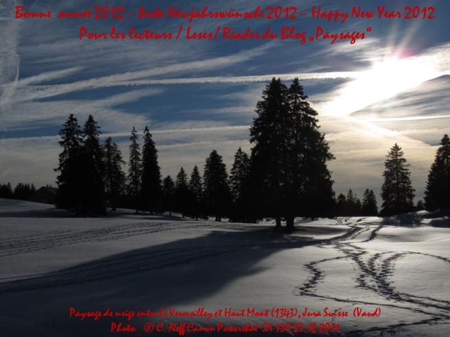 Bonne année  2012 blog paysages