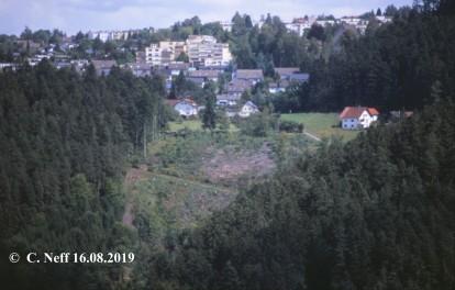 Schramberg - Blick auf die Steighäuslefläche 16.8.2012