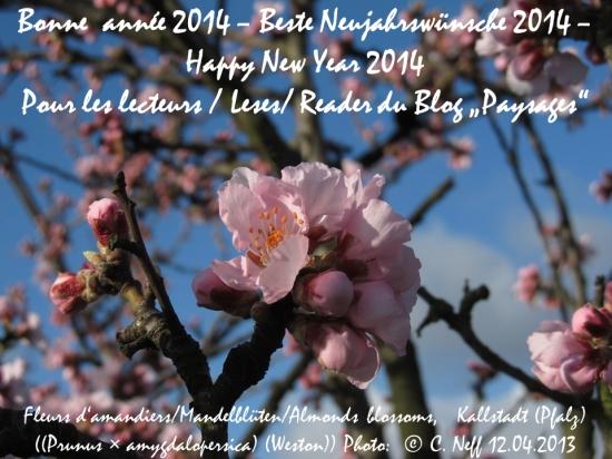 Neujahrspostkarte 2014 blog paysages