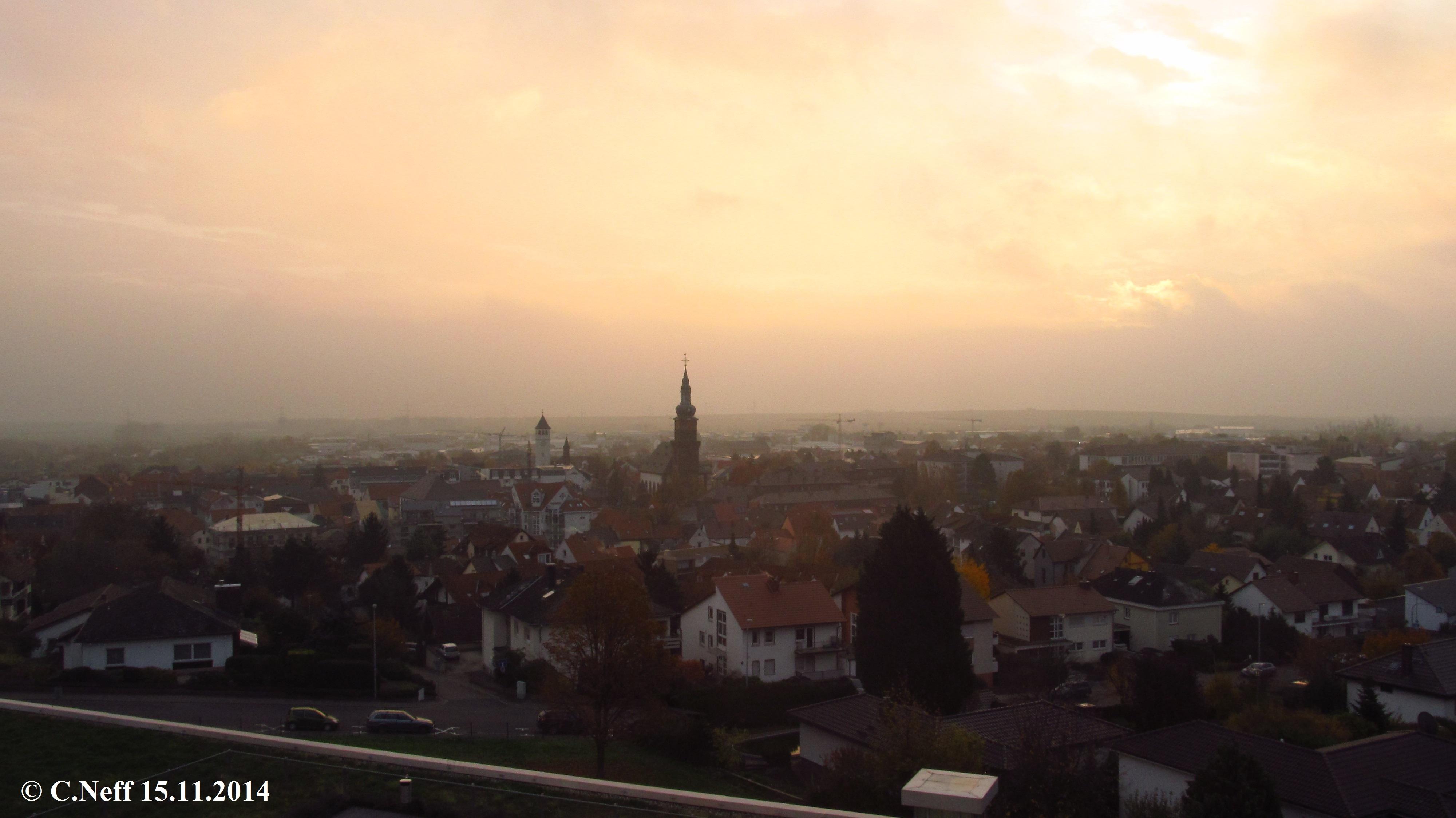 Grünstadt im Novembermorgennebellicht 15.11.2014