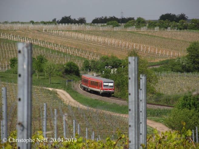 628 fährt durch Frühlingswingert bei Herxheim am Berg 20.04.2014
