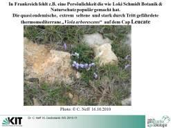 extraits cours géobotanique Violette Cap Leucate WS 2010-11