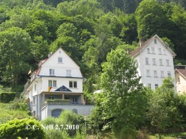 Verwaldung und Verbuschung in Schramberg 2.7.2010