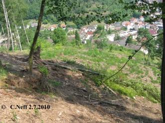 Blick vom Tössberg auf die Geißhalde 2.7.2010