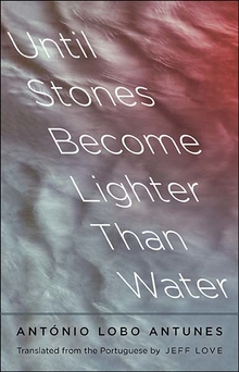 Bookcover Until Stones Become Lighter Than Water