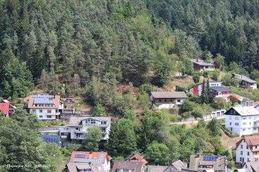 Californisation à Lauterbach (Forêt Noire) 28.07.2015