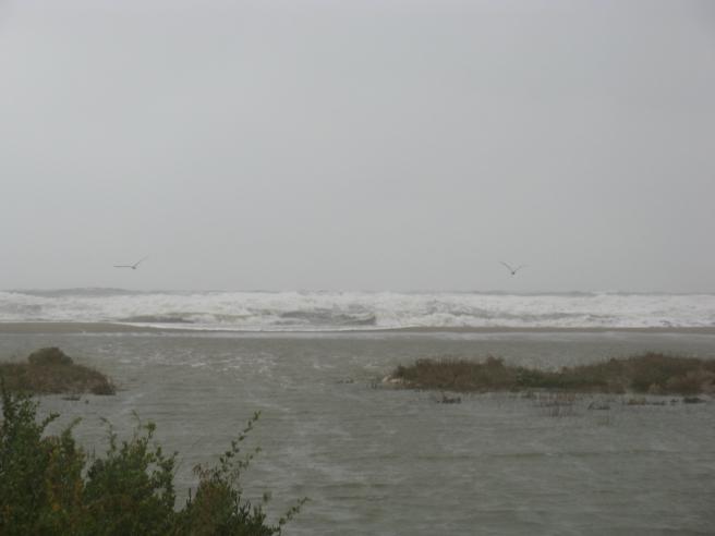 la mer sur la plage de Port Leucate 11.10.2010 9 Uhr 52