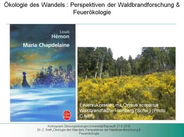 Titelfolie für Blog - Ökologie der Wandels 21.6.2010 Bewerbungsvortrag W -2 Professur für Störungsökologie
