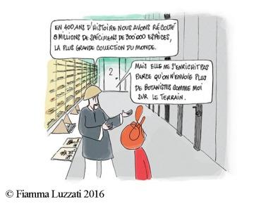 père david Fiamma Luzzati 2016