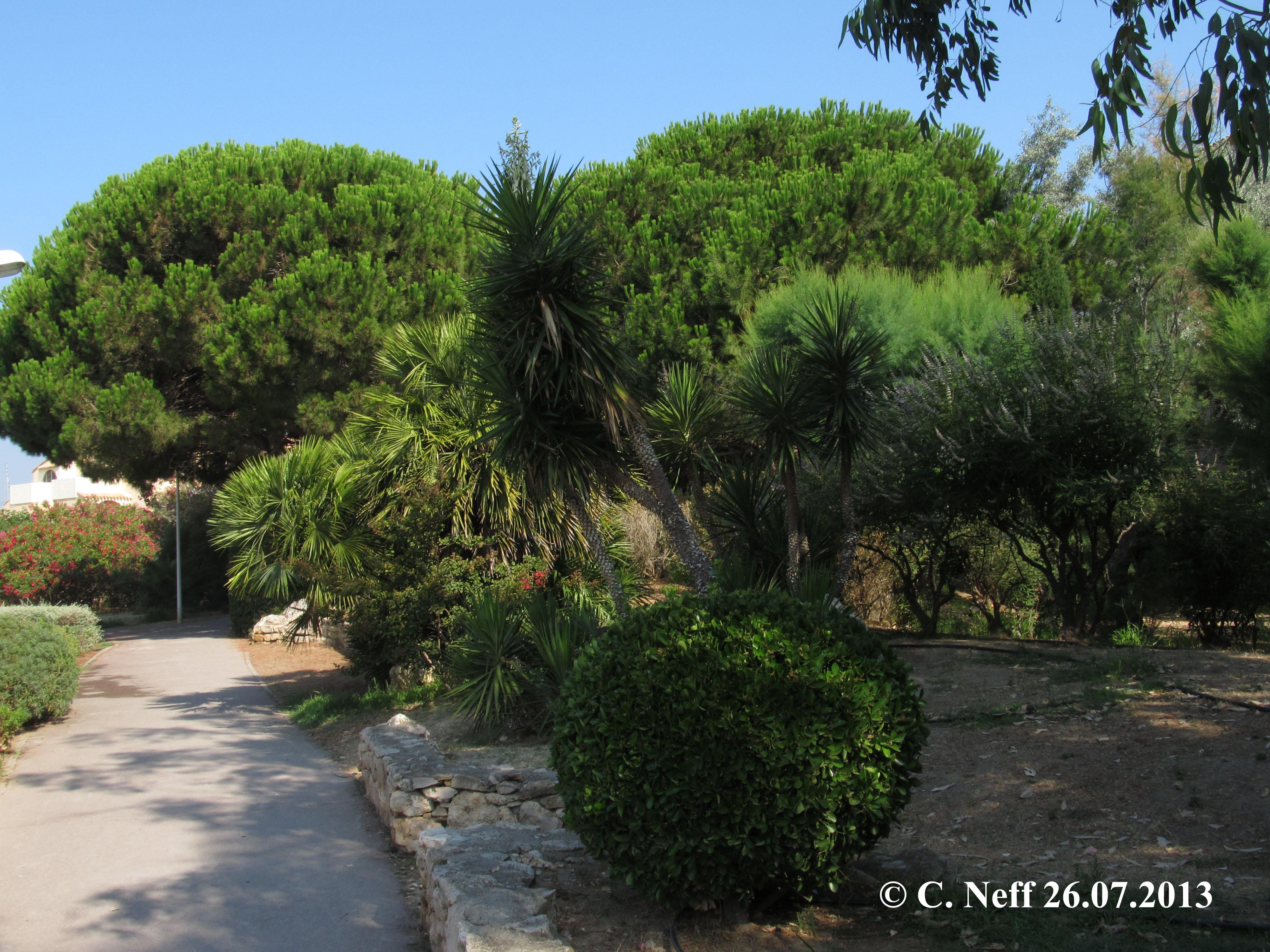 Espaces verts Port Leucate (Avenue de la Septimanie-  Rue de la