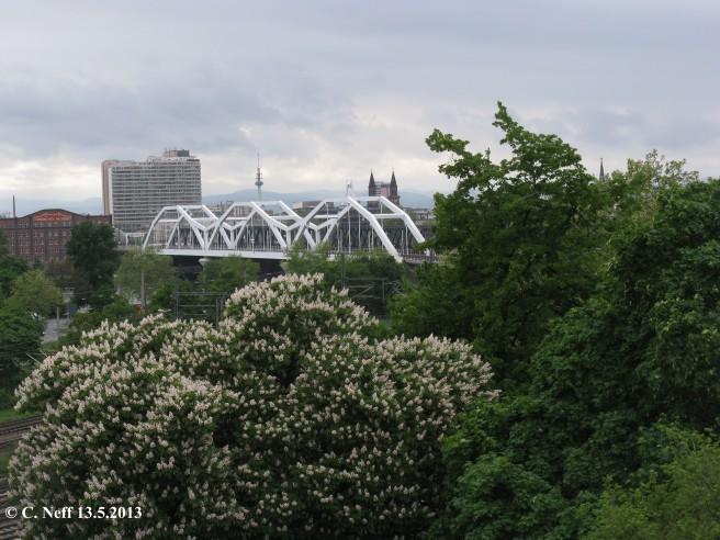 paysages urbains Mannheim - vue sur la Konrad Adenauer Brücke 13
