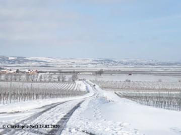 Neige sur la Unterhaadt- Schneebedeckte Unterhaardt 28.02.2020