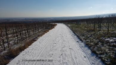 Janvier 2017 – hiver sur le Grünstadter Berg (06.01.2017)