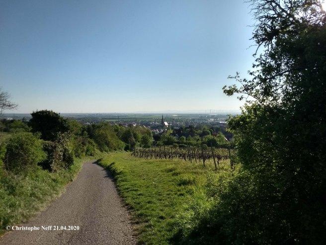 Blick auf Grünstadt 21.04.2020