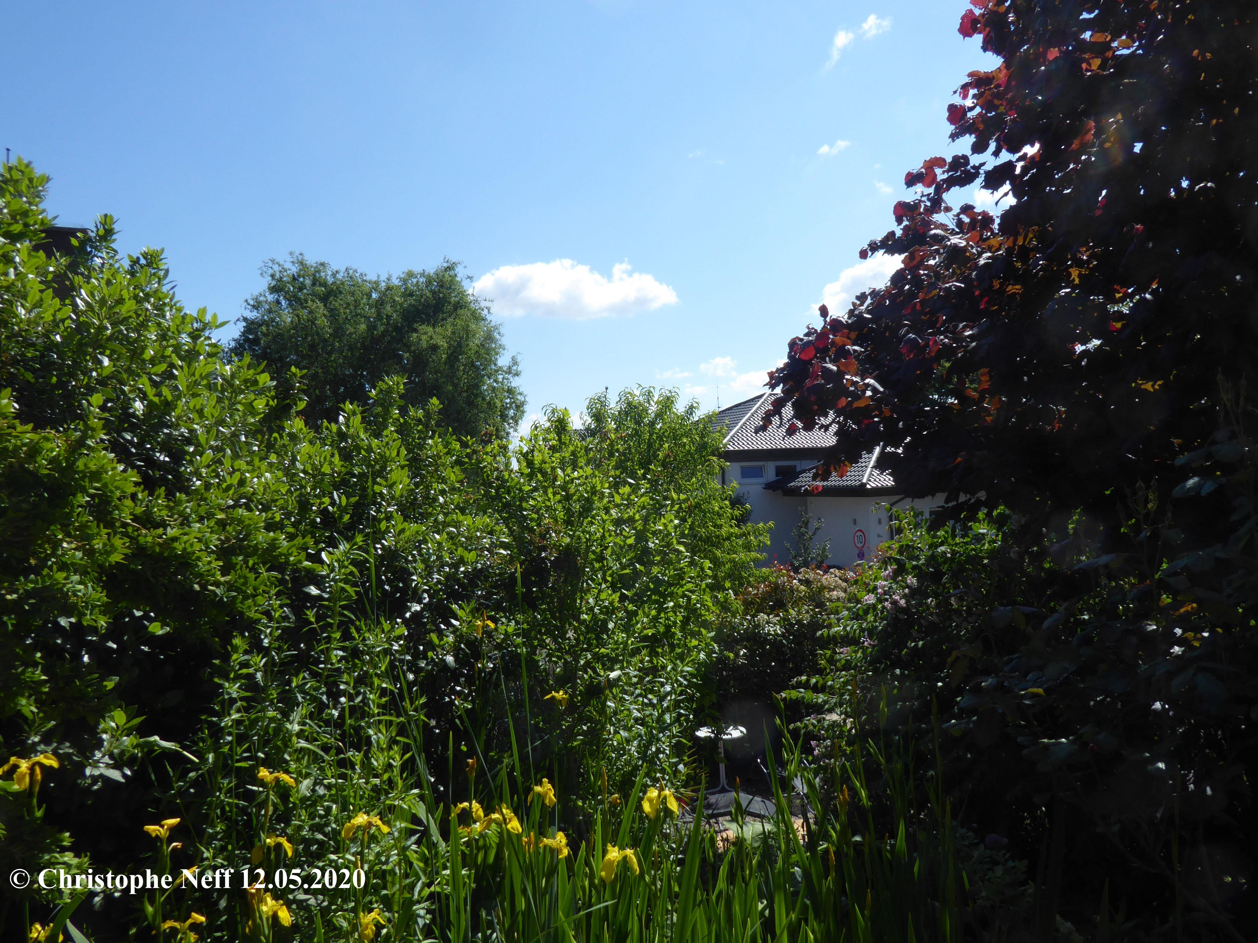 Garten und Himmelslandschaft Grünstadt 12.05.2020